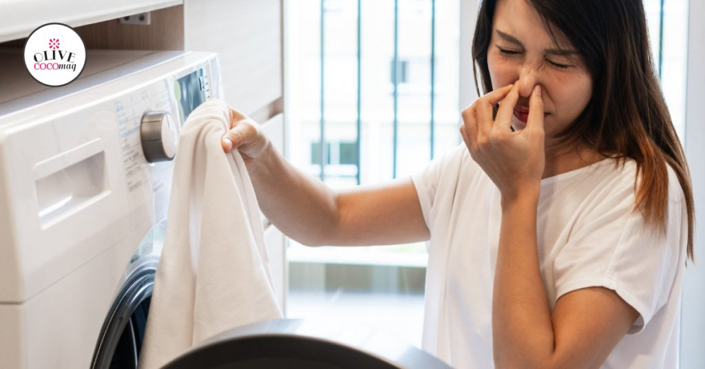 Why does the Indesit Washer Smell?